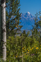This Morning (Wycpl) Tags: morning mountains wyoming tetons thegrand