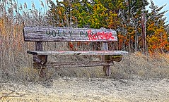IMG_1920~Vacancy (Cyberlens 40D) Tags: nj parks playgrounds bench foliage grafffiti canon sand trees old platinumheartawards