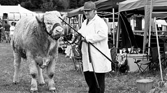 A load of old bull ! (Neil. Moralee) Tags: devon village fete neil moralee nikon d7100 man matute old laughing funny bald balding shirt moustache happy smile smiling back white mono monochrome bw candid face portrait outdoor natural light blackdown hills rural event local people hat close mature glasses show agriculture agricultural tractor farmer crops cattle livestock prize charolaise cow bull cowman herd heard heardsman