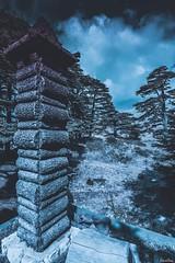 Cedars, Bsharri, Lebanon (Salim El Khoury) Tags: landscape retrospective retro d7200 nikon mountains mountain cedarsreserve reserve bsharri lebanon cedarsofgod cedarofgod cedars cedar trees tree nature