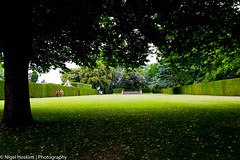 Great Lawn, Hidcote (ihoskins57) Tags: nationaltrust hidcote nigelhoskinsphotography garden plants greatlawn