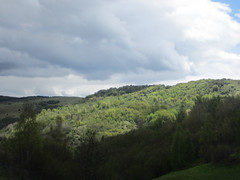 Sun and shadow, hilltop at Uvac Nature Reserve, Serbia (Paul McClure DC) Tags: uvac naturereserve serbia srbija zlatibor druinie sjenica balkans may2016 scenery