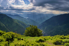 Kaghan Valley (Shehzaad Maroof Khan) Tags: sharan kaghan mountains light morning tree ray river kunhar cloudscape top hilltop meadow greens summer windy freshair peace pakistan nikon naran rays hope earth snow peaks grass tour