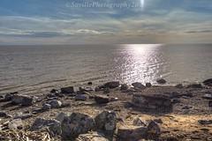 AAB_2913s (savillent) Tags: arctic ocean beaufort sea water waterscape sun rocks climate beach tuktoyaktuk northwest territories canada north summer nikon savillent july 2016