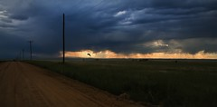 IMG_0436.2048 (Paul L Dineen) Tags: weldcounty nature landscape colorado pinnacle bird lone road clouds sunset glow