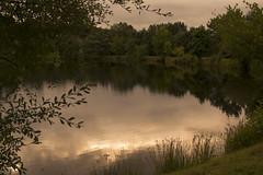 A lake to dream... (Yoli in the woods...) Tags: lake lago nature naturaleza sunset atardecer forest bosque paimpont bretaa bretagne brittany france francia fantasy fantasia water agua