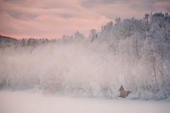 2016 | Holmvatnet (etomsen) Tags: schnee norwegen landschaft europa tom engelhardt himmel winter farbe see tomengelhardt colour europe landscape norway sea sky snow