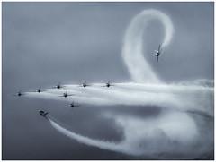 Swan edited (Brendan Masterson) Tags: nikon300mmf4 nikon d7200 bournemouthairfestival airshow aircraft redarrows monochrome airdisplay