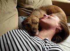 Por favor no molestar (Zandgaby) Tags: sleeping woman dog smile shirt female neck relax skin stripes sensual couch sofa silence relaxation cosy momentofsilence entspannung momentofrelaxation