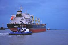Darya Chand (larry_antwerp) Tags: haven port ship belgium vessel antwerp tug schelde bulk schip angloeasternshipmanagement antwerptowage daryachand 9720328 kcmaritime kamalshipping