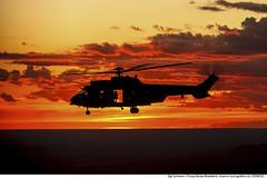H-36 Caracal - silhueta (Força Aérea Brasileira - Página Oficial) Tags: 1gav8 2017 a2a arar brazilianairforce cachimbo cpbv crepusculo esquadraofalcao eurocopterec725 exposicao exposicaoarquivonacional exposicaocendoc fab floresta forcaaereabrasileira forçaaéreabrasileira fotojohnsonbarros h36caracal helicoptero johnsonbarros papelcansonragphotographic pordosol silhueta voo helibras airbushelicopter airbus