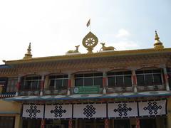 IMG_2678 (Sasha India) Tags: india buddhism karnataka indien hindistan buddhismus 印度 भारत littletibet הודו 인도 இந்தியா الهند буддизм هندوستان индия ινδία індія карнатака հնդկաստան אינדיע อินเดีย ભારત ინდოეთში