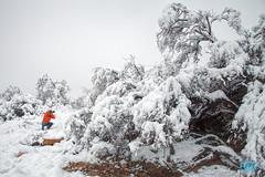 0223 IMG_2673 (JRmanNn) Tags: snow lasvegas bluediamond springmountains coolerdays coolingdown beattheheat