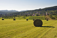 Lumière d'un soir d'été sur les Vosges du Nord (Excalibur67) Tags: art landscape nikon sigma alsace d750 paysage foin rundball fenaison vosgesdunord 24105f4dgoshsma