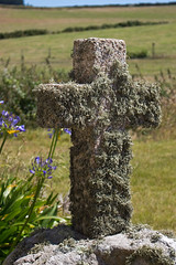 IMG_4573_edited-1 (Lofty1965) Tags: islesofscilly ios tresco church stnicholas cross moss