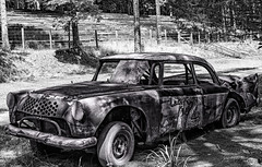 Rust in Peace (jtbcalico) Tags: history racetrack nascar hillsborough