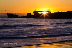 Cement Sanctuary (TierraCosmos) Tags: ocean sunset santacruz seagulls seascape pelicans silhouette montereybay californiacoast cementship seacliffbeach