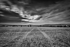 Abenddmmerung (Zesk MF) Tags: sunset nd filter nd1000 sigma 8mm langzeitbelichtung wideangle field feld nature black white zesk sky dramatic clouds