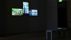 gary warner - waterwalkkyoto (Gary L Warner) Tags: art installation exhibition contemporary sydney