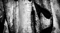 The Man of Sorrows (dirksachsenheimer) Tags: ausstellung bavaria bayern deutschland dirksachsenheimer franconia germanischesnationalmuseum germany geschichte kunst museum nationalmuseum nuremberg nrnberg exhibition historical
