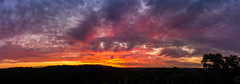 Berowra Sunset 11th September /2016 (There was a bear and a rabbit) Tags: september 2016 holiday australia nsw berowra sydney bush scrub outdoor serene cloud sunset sunrise sky mountain dusk berowraheights aussie lightroom photoshop script importimagesintoscript nex5n sony