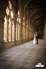 HZP-Carmen-Gert-10-06-16-62 (hochzeitsphotos-eu) Tags: carmen deutschesweintor fotograf gert hochzeitsfoto hochzeitsfotograf hochzeitsfotografie hochzeitsfotos hochzeitsphotos hochzeitsphotoseu wedding weddingphotography