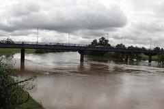 Belmore Bridge, Hunter River, N.S.W. 22 April 2015 (maitland.city library) Tags: bridge river 22 flooding library april newsouthwales hunter floods maitland floodwater 2015 belmore hunterriver21april2015
