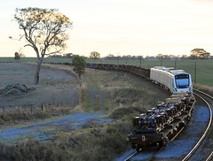 2015-03-25_1836-14-930 Transperth B-106 on 4NY3 at Nubba (gunzel412) Tags: geotagged australia newsouthwales aus nubba murrumburrah geo:lon=14827291000 geo:lat=3452507000