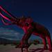 columbian mammoth. borrego springs, ca. 2015.