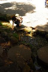 d200_dsc_2313_20150530 (mick ronno) Tags: nikon shrine af d200 kawagoe nikkor 2870mmf3545d jinja 川越 hikawa koedo 小江戸 川越氷川神社
