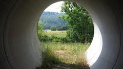 """Sommer am Fluss aus speziellem """"Tunnelblick"""" ;-) (saahiradancer) Tags: priska am sommer wiese fluss schwarzwald schopfheim nieke saahira"""