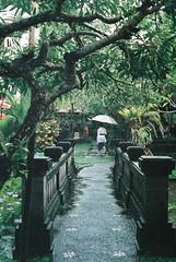 Sous la pluie... (xavierhc) Tags: bali rain pentax natura 1600 fujifilm mx