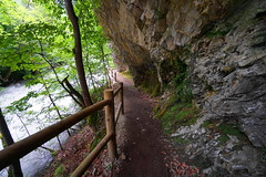 Chemin au bord du torrent 1/2 (yoduc73) Tags: pont brides chemin torrent salins