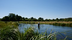 chilbolton 19 july 2016 1 (eventful) Tags: test river weed outdoor hampshire watercourse scythe chilbolton