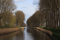 Peaceful scene (paul indigo) Tags: belgium damme paulindigo bridge canal colour landscape reeds reflection travel trees