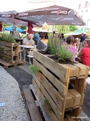 Begrnte Holzpaletten_8944 (urban-development) Tags: urban gardening stadtkologie lebensqualitt wien