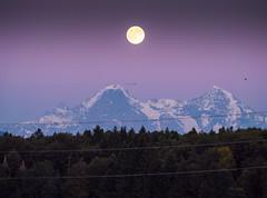 Vollmond (s.schulthess) Tags: mond moon vollmond full landscape landschaft bern berg alpen alps switzerland schweiz elektrizitt electricity wald forest