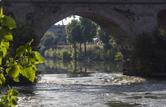 calmo e mosso (M.a.r.t.Y) Tags: fiume tevere riflesso reflection roma ponte