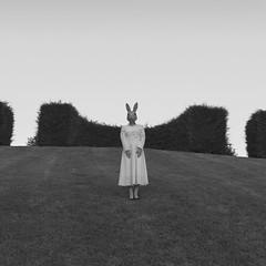 Emily serie (Pedro Daz Molins) Tags: surrealism surreal surrealist retro vintage black white blanco negro rabbit conejo jardin garden pedro diaz molins emily serie conceptual