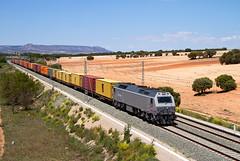 TECO de Acciona Madrid-Valencia a cargo de una 333.3 ROSCO (ordunte) Tags: rosco renfe renferosco accionarosco acciona teco mercante freight prima vossloh vossloh3333 alpera