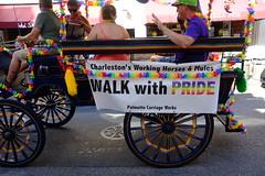 Pride Parade - Charleston 2016 (donwest48) Tags: charleston charlestonsc pride parade kingstreet gay