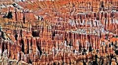 The hoodoo that you do (SCFiasco) Tags: pillars spires bryce nationalpark brycecanyon nps nationalparkservice amphitheater cathedral overlook vista panorama majestic hoodoo rock stone scfiasco siasoco edsiasoco outdoor landscape canyon