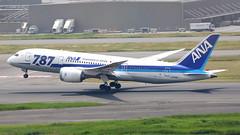 IMG_1490 JA816A (biggles7474) Tags: boeing 787 dreamliner ana all nippon airlines tokyo haneda international airport hnd b788 b7878 ja816a