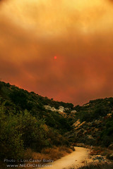 Sand Fire as Seen from the Burbank Hills (Lon Casler Bixby) Tags: loncaslerbixby landscapephotography landscape neoichi nature naturephotography burbank california fire fineartphotography fineart fineartprints firemen brushfire wildfire forestfire sandfire wilderness firstresponders firefighters smokejumpers wild wanderlust rural interiordesign outdoorphotography cloudscape scapes artistic artisticphotography streetphotography dirtroads smoke canonphotography canon sunsets