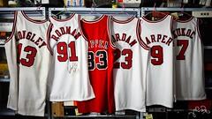 DSC_1588 (ye-wa) Tags: bulls jersey