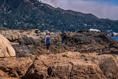 Big_Sur_E-2421 (erniezahn) Tags: bigsur ca carmel pacific pointlobos pointlobosstatepark statepark brush cliffs clouds hiking landscape nature ocean rocks sea sky trees water carmelbythesea california unitedstates us