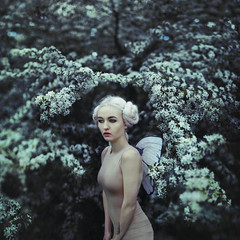 Cold child (StephaniePearl ) Tags: fairy fae faerie fantasy cold blue conceptual beauty fashion whitehair ethereal portrait light blossom spring outdoors location tree pixie forest garden