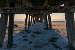 Under the Jetty (Norma Martiri) Tags: australia jetty adelaide port sun sunset gold golden hour dusk beach sea ocean sand