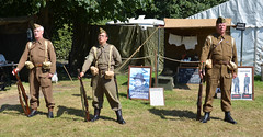 Home Guard (Peter M Garwood) Tags: warpeace homeguard homefront