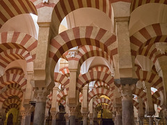 Spain May-June 2016-1319-Edit.jpg (bruce.lande) Tags: vowrenewal cathedral church sitges vacation flamenco mosque spain barcelona cava friends history madrid wine granda seville cordoba